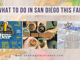 What to Do In San Diego This Fall