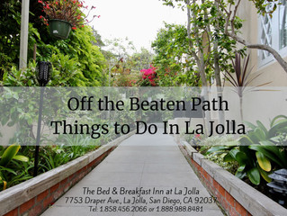 Off the Beaten Path Things to Do In La Jolla