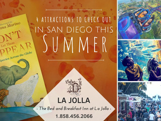 4 Attractions to Check Out In San Diego This Summer