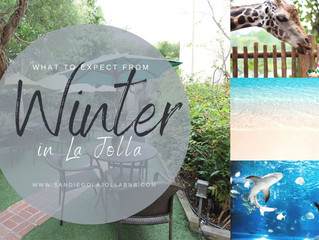 What to Expect From Winter in La Jolla