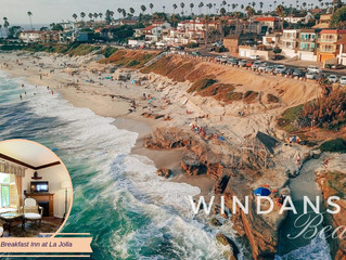 La Jolla Beach Spotlight: Windansea