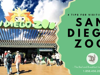 4 Tips for Visiting the San Diego Zoo