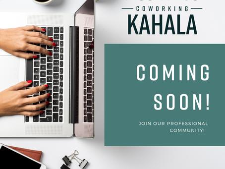 Treehouse Kahala - Coming 2021