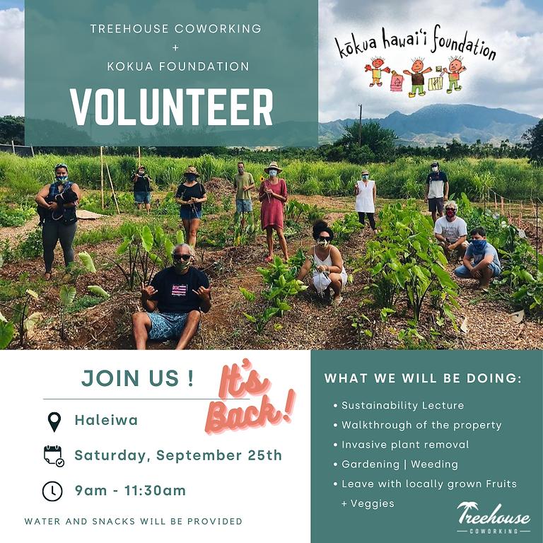 Kokua Foundation Volunteer work day