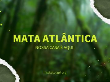 Mata Atlântica: Nossa casa é aqui!