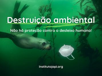 Destruição Ambiental na Pandemia