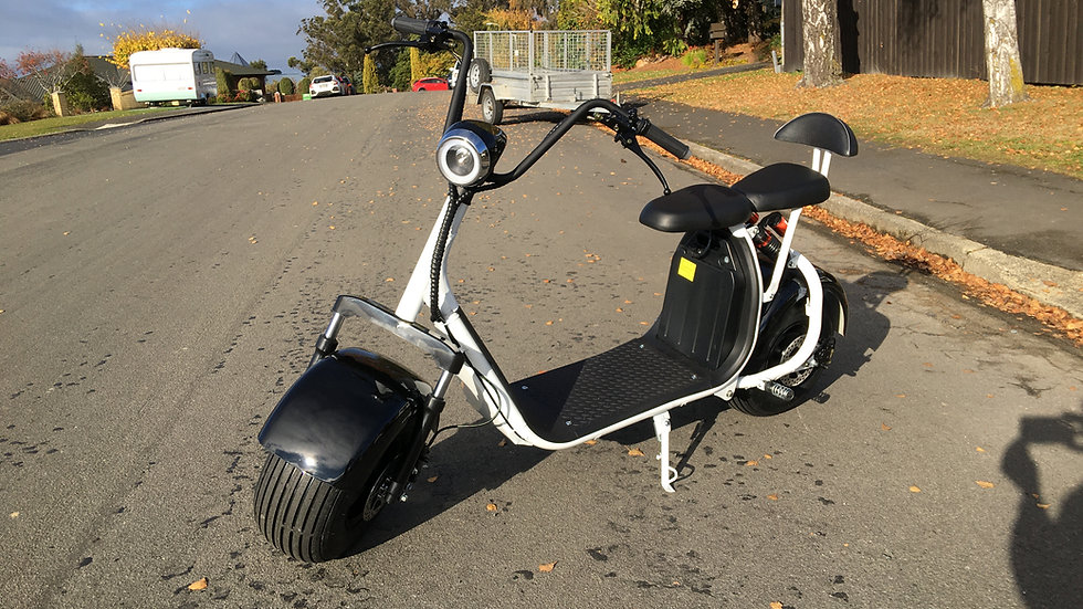 2020 REAR SUSPENSION FAT TYRE ELECTRIC SCOOTER