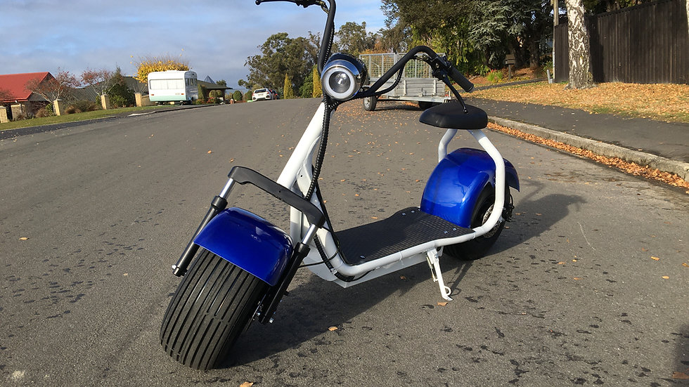 2020 FAT TYRE ELECTRIC SCOOTER