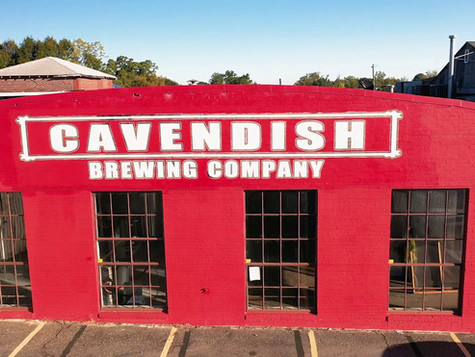 Cavendish Brewing for GoGaston