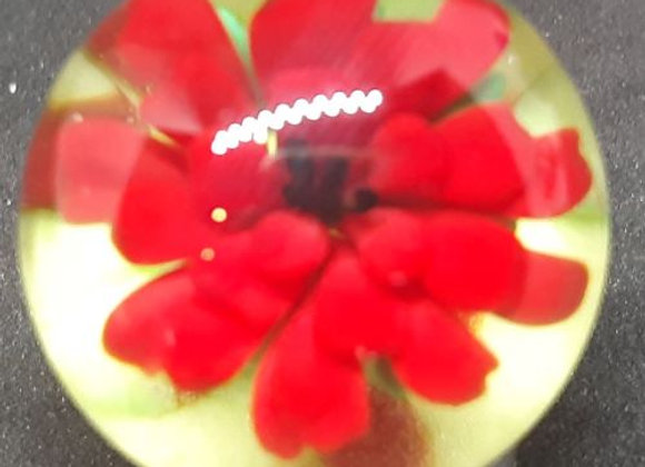 Red Flower in a field of flowers glass marble by George Pavliscak