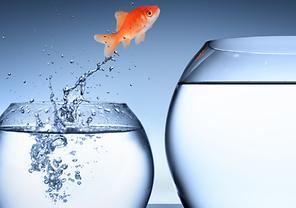 Succession-Planning-Image-Mikki-Blog-e15