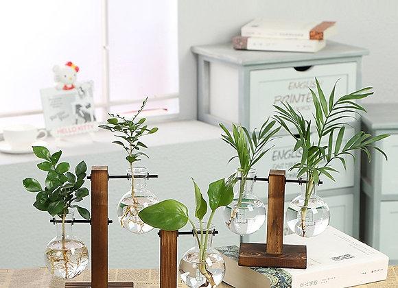 Terrarium Vasevase Decoration Home Bonsai Flower Plant Vases