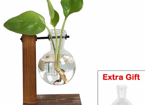 Terrarium Hydroponic Plant Vases Vintage Flower Pot