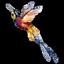 Aquarelle Oiseau 2
