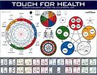 TFH Toutch For Health Kinesiologie