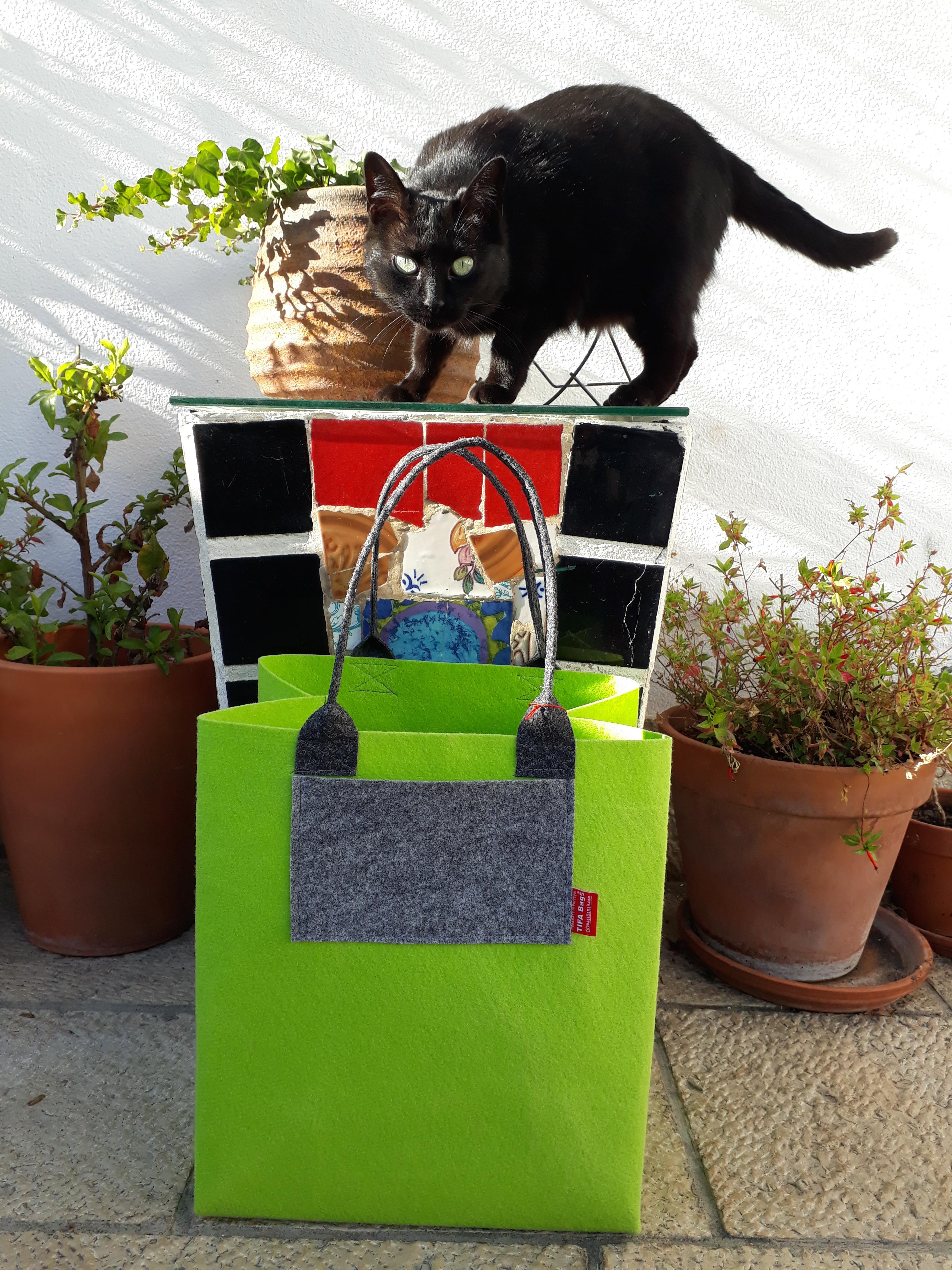 Green market bag + Cool Cat ;)