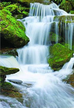 waterfall green.jpg