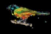 bird 1-01.png