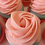 Thumbnail: Pretty Perfect Cupcake Soap