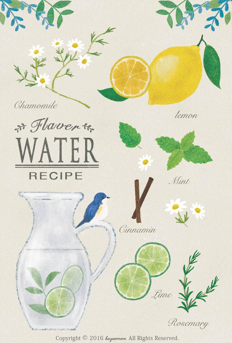 Flavor Water レシピイラスト