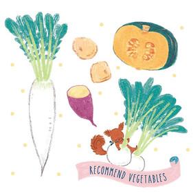 離乳食レシピ《野菜ペースト》