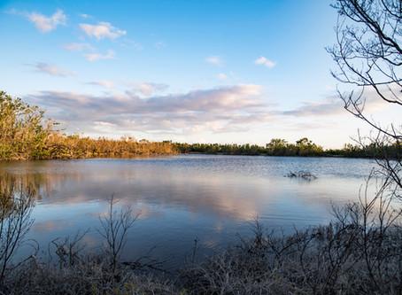 Restoring Florida's Everglades Will Benefit Both Humans & Nature