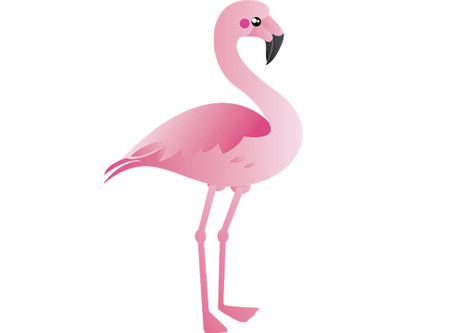 Miami Living Loves The American Flamingo