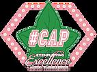 #CAP Logo.png