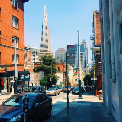 The Ultimate San Francisco Travel Guide