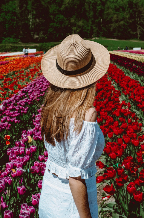 7 Photos to Inspire You To Visit the Abbotsford Tulip Festival