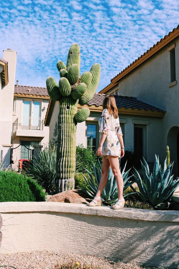 The Ultimate Scottsdale/Phoenix, Arizona Travel Guide
