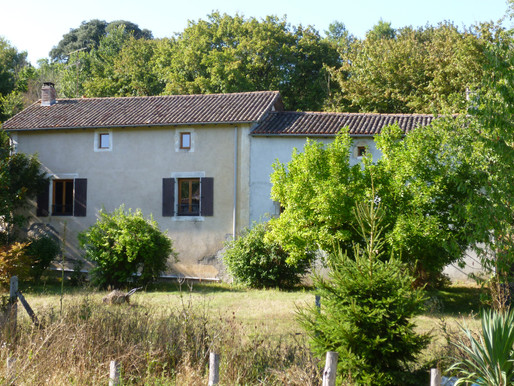 A VENDRE Grande maison Romagne - 6 chambres - dépendances sur 4350m² - proche rivière