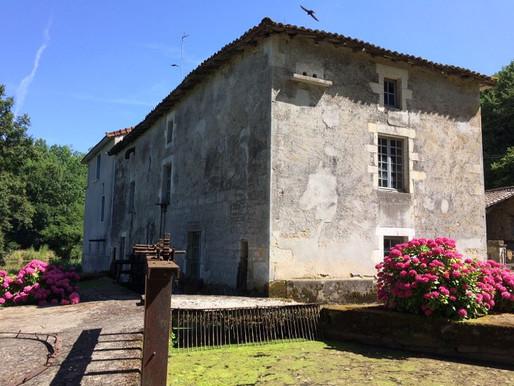 A VENDRE Moulin à farine apparaissant sur la carte de Cassigny - Saint-Macoux - 15 775m² de terrain