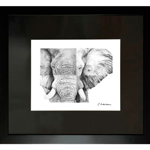 elephant art, elephant drawing, african art, african drawing, elephant face, elephant picture, tusk drawing