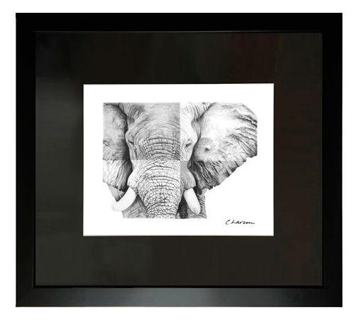 Elephant art, elephant pencil drawing, elephant portrait, amazing elephant art
