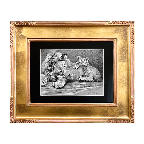 'Power Nap' Framed Original Drawing (charcoal)