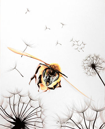 bee art, honey bee drawing, cool bee art, bee pencil drawing, incredible bee art, bee flying, honey bee artwork