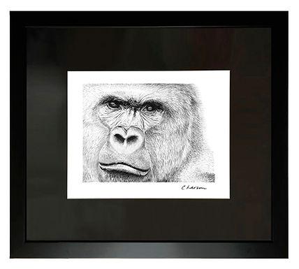 Silverback_frame540px.jpg