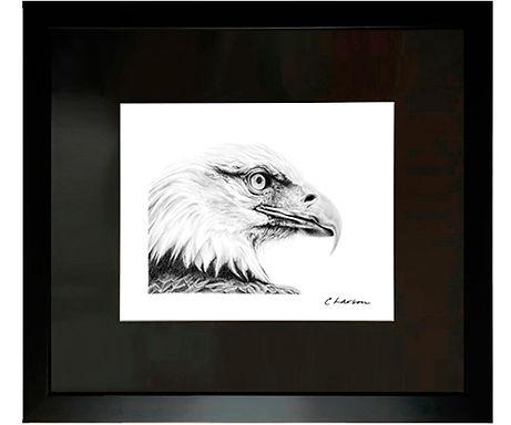 Bald Eagle art, Eagle pencil drawing, Bald Eagle original art, Americas national symbol, patriotic art