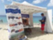 WhatsApp La caravane des tortues marins2020-03-05 at 13.54.31-2.