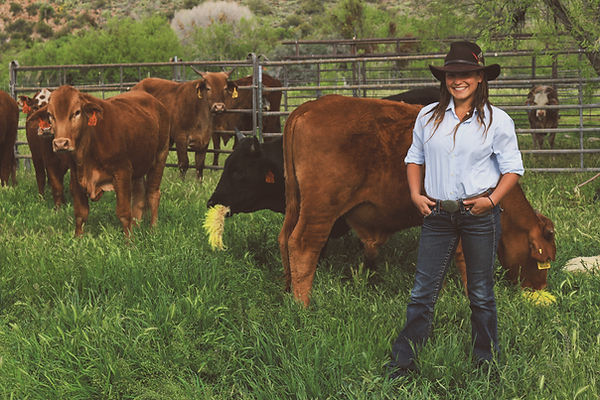grass fed beef local woman ranch farmer organic arizona