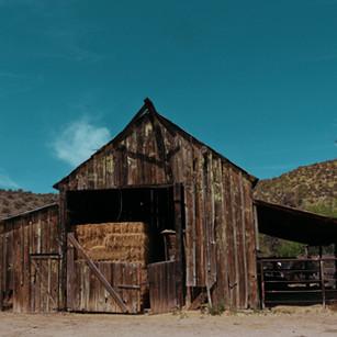 Old Hay barn.jpg