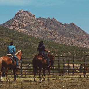 Savy_Ryan horseback.jpg