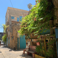 סמטאות העיר העתיקה - עכו