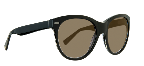 Plastic Polarized Brown