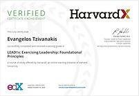 HarvardX.JPG