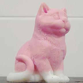 soap cat.jpg