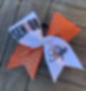 Senior Orange .JPG