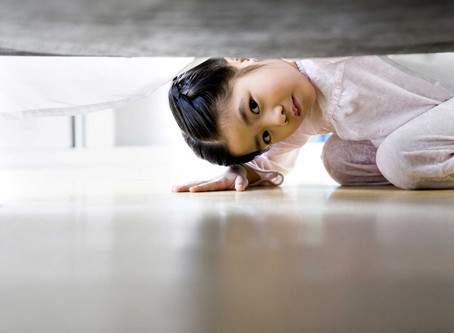 Tem um jacaré embaixo da cama!