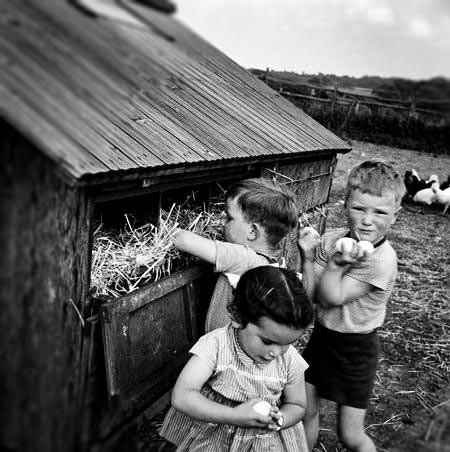 crianças brincando no campo foto antiga